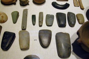 Neolithic diversity of tools. Source http://en.wikipedia.org/wiki/File:Néolithique_0001.jpg